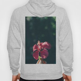 Hibiscus in Mexico Hoody