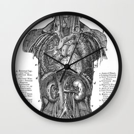 Location of Internal Organs in the Human Body Wall Clock