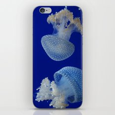 Jelly Fish iPhone & iPod Skin