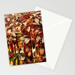 Red green craziness Stationery Cards