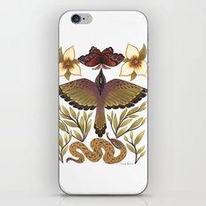 The Pecking Order iPhone & iPod Skin
