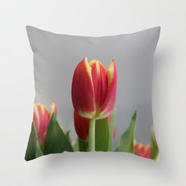 At the Bend on Barlow Throw Pillow