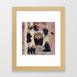 Red Panda Abstract  mixed media digital art collage Framed Art Print