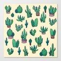 Cactus !! green by franciscomffonseca
