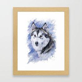 Winter Dog Framed Art Print