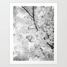 Spring is here to stay Art Print