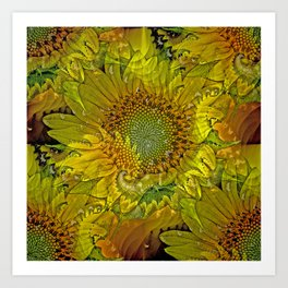 Sunflower Fractal Art Print