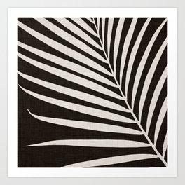 Zebra Palm / Black and White Palm Frond Art Print