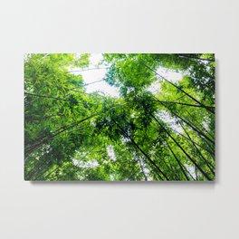 Crouching Tiger Hidden Bamboo Metal Print