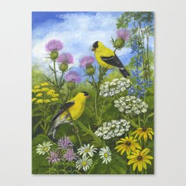 Goldfinches and Thistle Canvas Print
