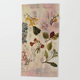 Botanical Study #1, Vintage Botanical Illustration Collage Beach Towel