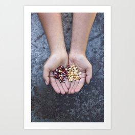 Food Jewels CORN Painted Mountain and Ashworth Art Print
