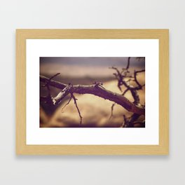 Tree limb Framed Art Print
