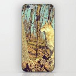 Czech Wolfdog iPhone Skin