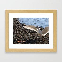 Wingspan Framed Art Print