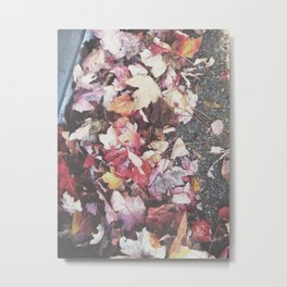 Autumn 13 Metal Print