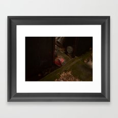 What was once a prize...  Framed Art Print
