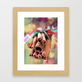 Cinnamon Sticks Framed Art Print