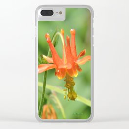 Columbine in the Breeze Clear iPhone Case