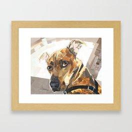 Jonesy Framed Art Print