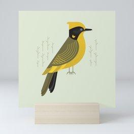 Helmeted Honeyeater, Bird of Australia Mini Art Print