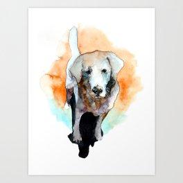 dog#20 Art Print