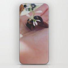 Bumblebee iPhone & iPod Skin