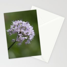 Small Bouquet Stationery Cards