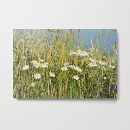 Wildflowers along the lake Metal Print