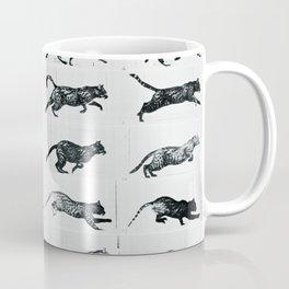 Time Lapse Motion Study Cat Monochrome Cat Mom Herding Cats Coffee Mug