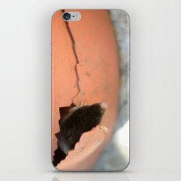 Knock Knock iPhone Skin