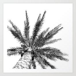 Black and White // Palm Tree Art Print Art Print