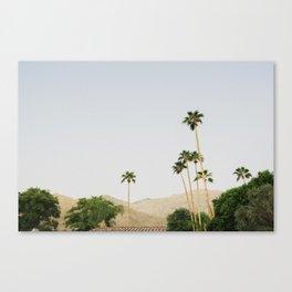sunrise in the palm desert Canvas Print