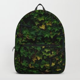 Lush Backpack