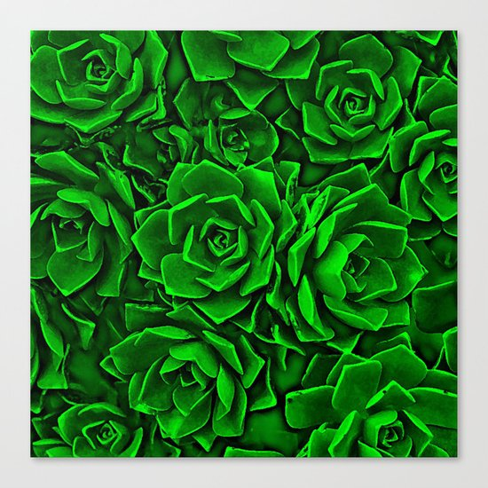 Succulent Green Canvas Print