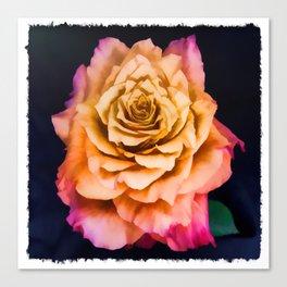 Wild Free Spirit Rose Canvas Print