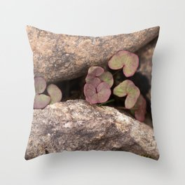 Stones and Plants by The Lake shore #decor #society6 #buyart Throw Pillow
