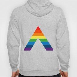 LGBT ALLY Rainbow Gay Pride Flag Hoody