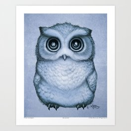 """""""The Little Owl"""" by Amber Marine ~ (Blueberry Version) Graphite & Ink Illustration, (Copyright 2016) Art Print"""