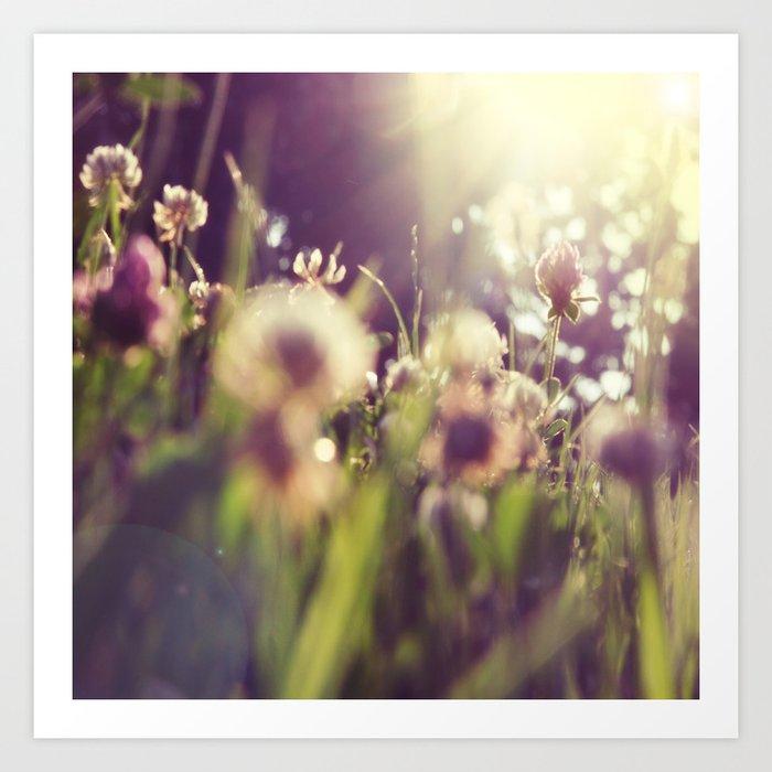 Sunday's Society6 | Sprint art print, flowers in the sun