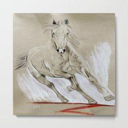 Florida Cracker Horse Metal Print