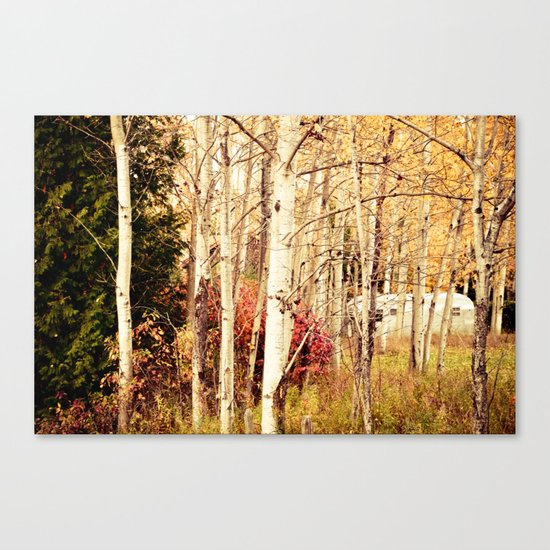She Was a Trailer Park Girl at Heart  - color Canvas Print