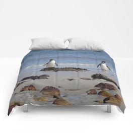 Magellanic Penguins Comforters