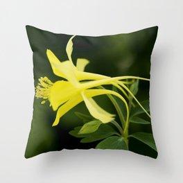 Golden Spur Columbine Throw Pillow