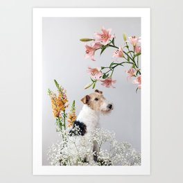 My baby sent me flowers Art Print