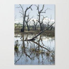 Winton Wetlands Canvas Print