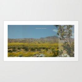 Trippy Joshua Tree super bloom Art Print