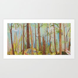 Old Growth Forest Art Print