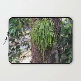 Epiphyte growth on tree in rainforest Laptop Sleeve