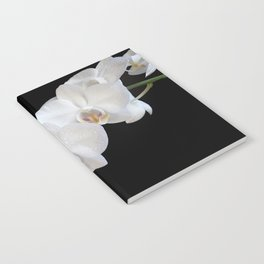 White Orchids Notebook